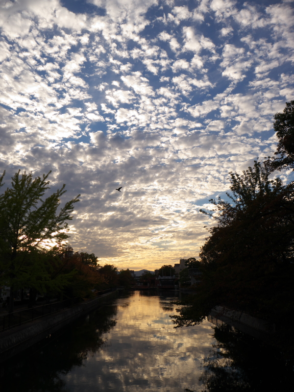 京都新聞写真コンテスト 暮れゆく秋空
