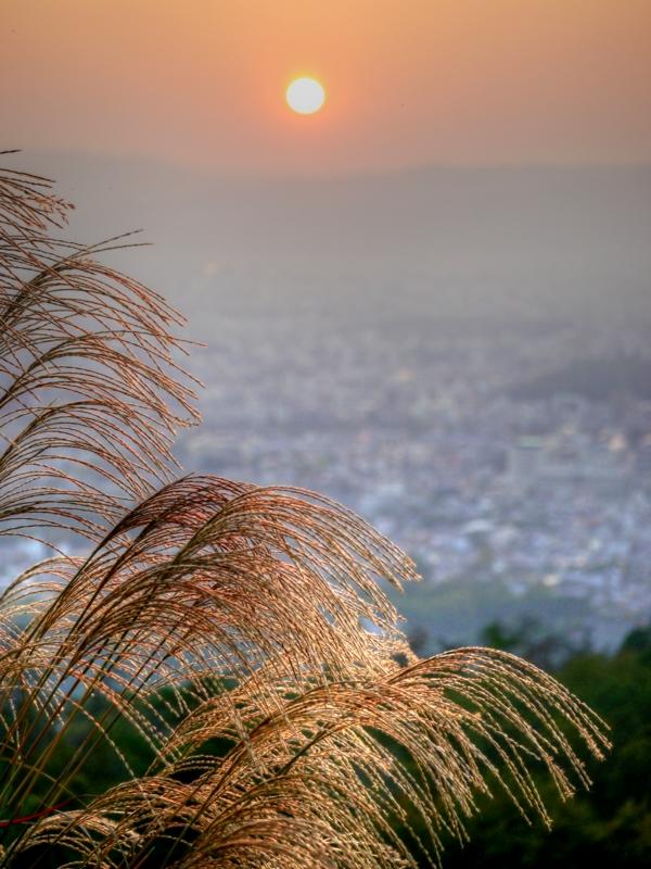 京都新聞写真コンテスト 秋の夕日