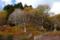 京都新聞写真コンテスト 秋の八丁平