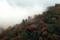 京都新聞写真コンテスト 霧沸く秋の山稜