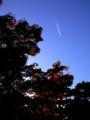京都新聞写真コンテスト 彗星のように