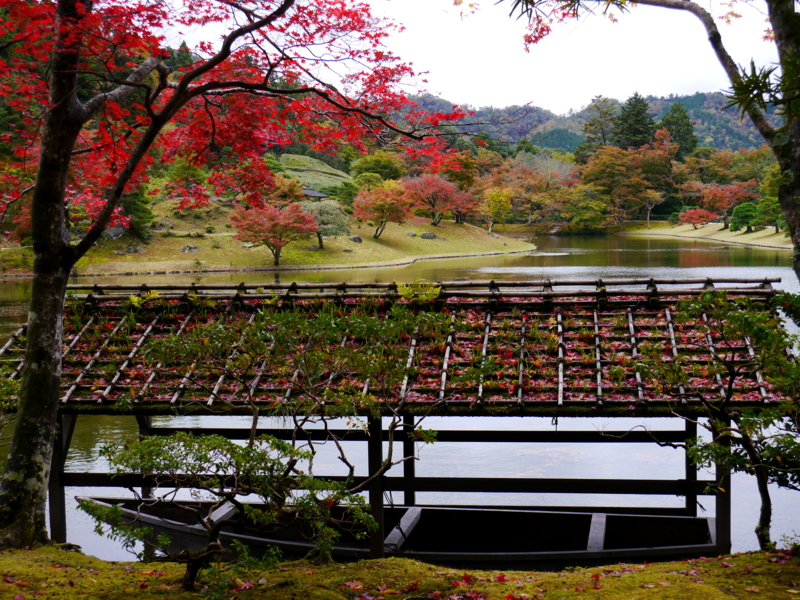 京都新聞写真コンテスト 修学院離宮浴龍池