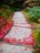 京都新聞写真コンテスト 散紅葉の小道