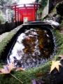 京都新聞写真コンテスト 手水の天