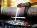 「紅一葉」1回京都洛北・森と水のフォトコンテスト優秀賞