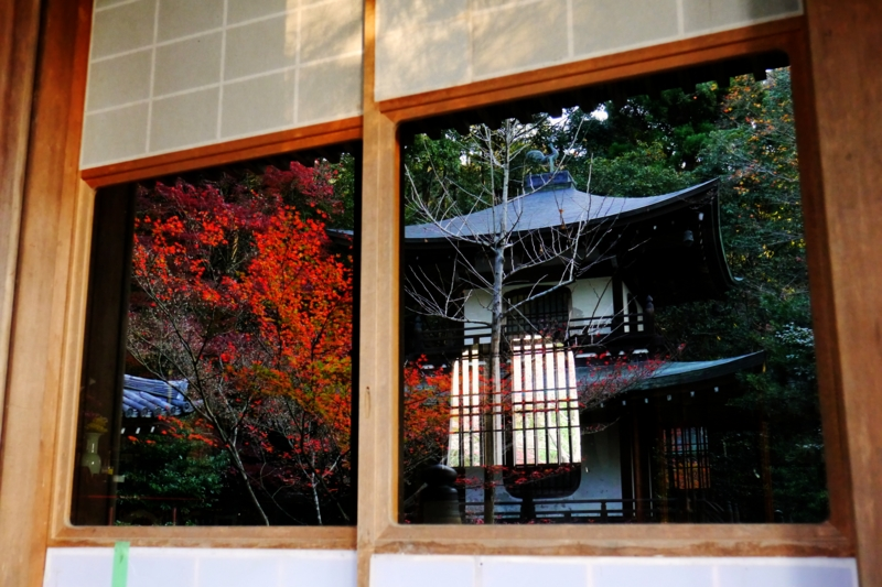 京都新聞写真コンテスト 内と外