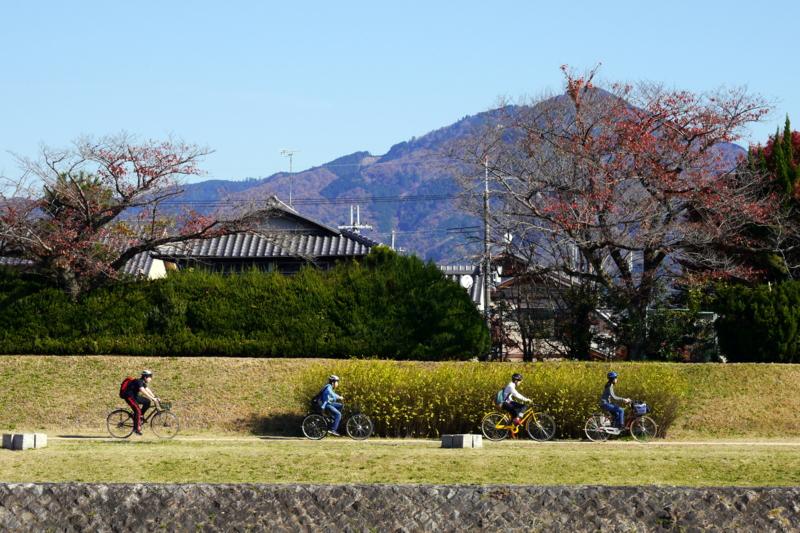 京都新聞写真コンテスト チャリンチャリン