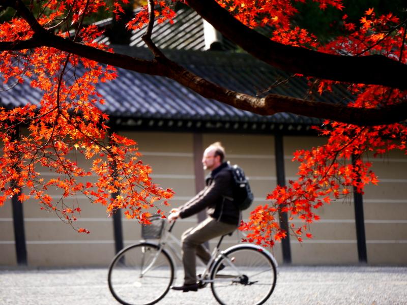 京都新聞写真コンテスト 秋の自転車通勤