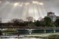 京都新聞写真コンテスト 降り注ぐ光芒