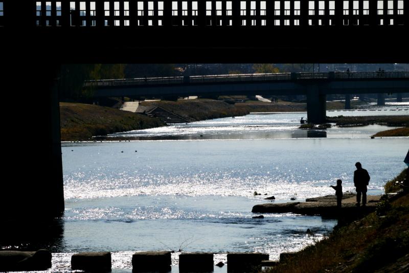 京都新聞写真コンテスト 冬日さす鴨川