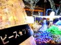 京都新聞写真コンテスト 平和の祈り