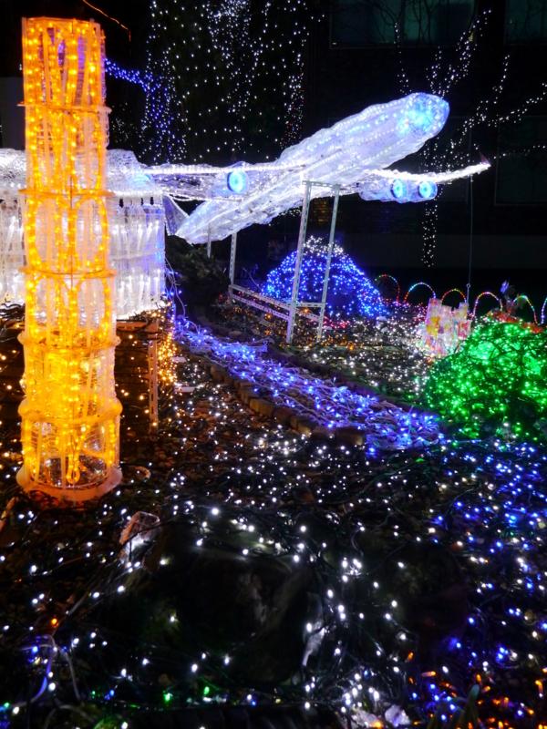 京都新聞写真コンテスト 願いを乗せてテイクオフ