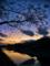 京都新聞写真コンテスト 暮ゆく空と楝の実
