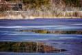 京都新聞写真コンテスト 凍れる深泥池