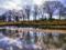 京都新聞写真コンテスト 冬枯れの賀茂川河川敷
