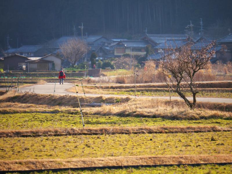 京都新聞写真コンテスト 山里の帰り道