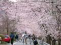京都新聞写真コンテスト どこまでも