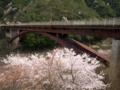 京都新聞写真コンテスト 桜咲く保津峡駅