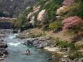 京都新聞写真コンテスト 桜咲く保津川下り