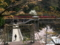 京都新聞写真コンテスト 春のトロッコ保津峡駅