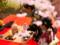 京都新聞写真コンテスト 桜の下で野点