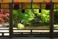 京都新聞写真コンテスト 新緑の御手洗川