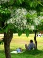京都新聞写真コンテスト 植物園の休日