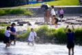 京都新聞写真コンテスト 5月というのにこの暑さ