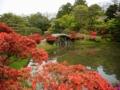 京都新聞写真コンテスト 春の桂離宮3