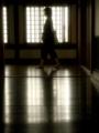 京都新聞写真コンテスト 柔らかな光