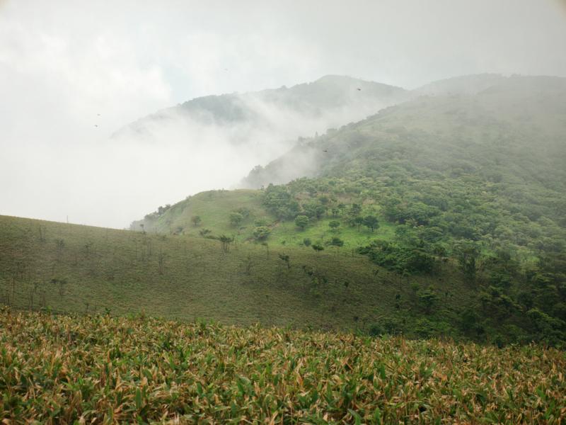 京都新聞写真コンテスト 霧湧く山稜