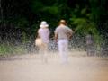 京都新聞写真コンテスト 噴水に見送られて