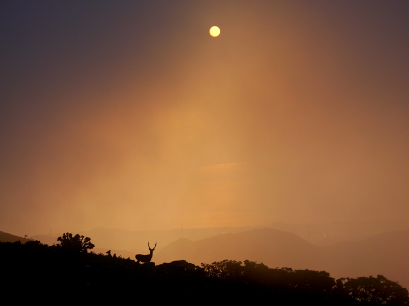 「山上の夕暮れ」35回京都新聞写真コンテスト最優秀賞