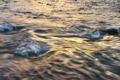 黄昏色の水面