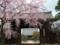 妙覚寺にて