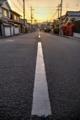 夕日に伸びる@京都一乗寺