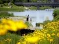 鴨川の休日