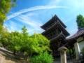 飛行機雲@真如堂