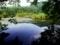 深泥池にて