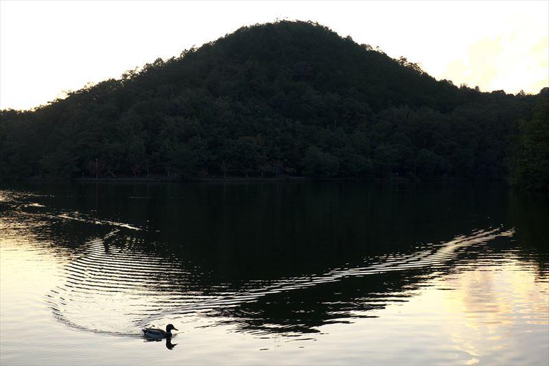 モノトーンの湖面@京都宝ヶ池
