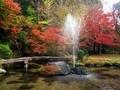 秋の三宅八幡宮