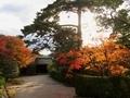 秋の修学院離宮中離宮