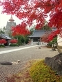 秋の妙満寺