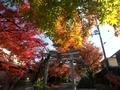 鷺森神社参道
