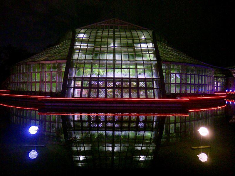 UFO着陸@京都府立植物園