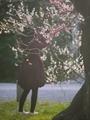 花を撮る@京都御苑