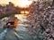 疎水を往く十石船