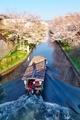 桜の中を行く十石舟4@伏見