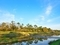 春の加茂川