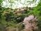 春色に染まる@比叡山